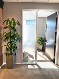 two green plants on a hallway.jpeg