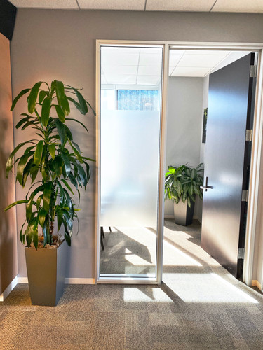 two green plants on a hallway.jpeg