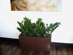 Tolga Rectangle Fiberglass Planter Box