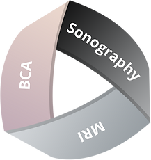 Triangle-MRI-BCA-Sonography.png