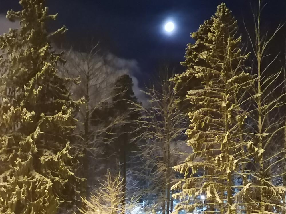 Helsinki's nature snow and moonlight, photo by Pedro Aibéo