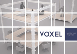 Pages from voxel.jpg
