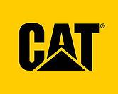 CAT flag.jpg