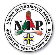 logo Nip.jpeg