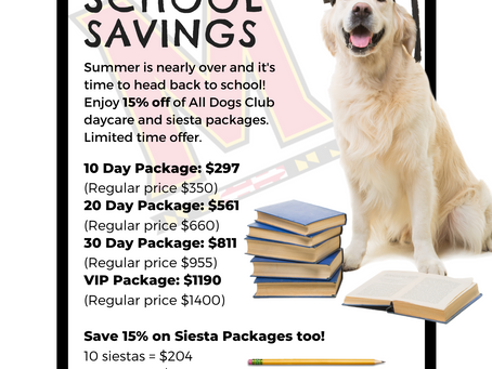 Back to School Savings: Save 15% on Daycare and Siesta Packages!