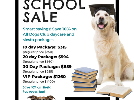Back to School Special: Save on Daycare Packages!