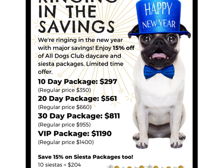 We're Ringing in the New Year with Savings: Save 15% on Daycare and Siesta Packages!