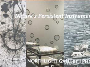 Nature's Persistent Instrument