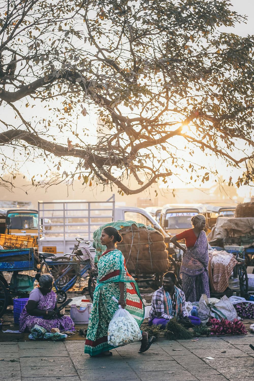 Photo by Prashanth Pinha on Unsplash