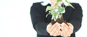 מושיטה ידיים עם צמח בידיה