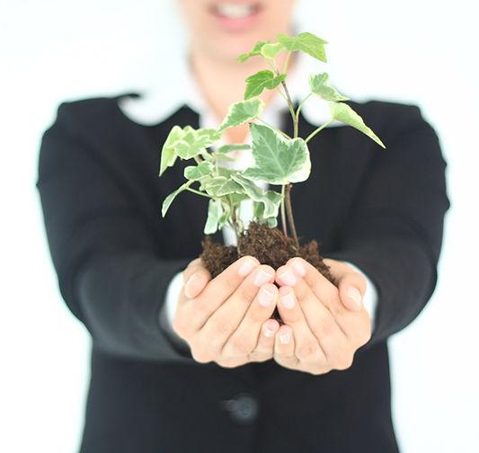 Sage Advancement Group | Boston | Non-profit Consultants