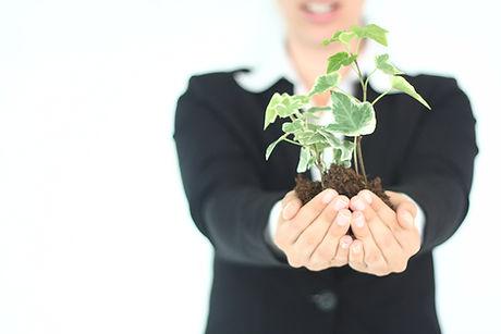 Plant Presentatie