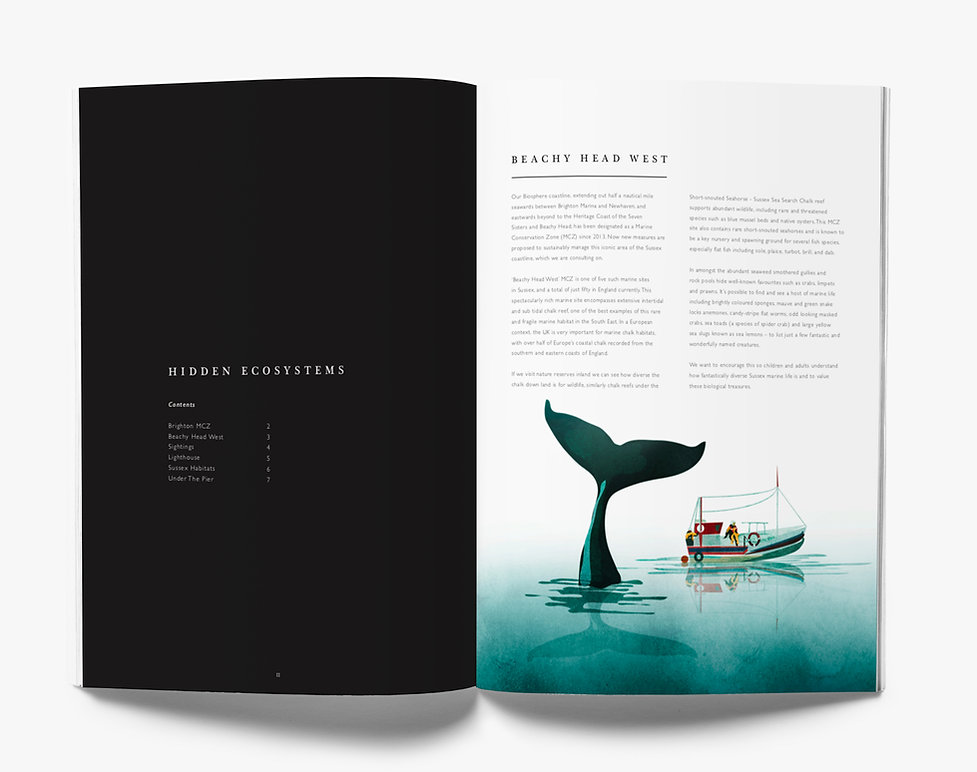 Secret Seas Pages.jpg