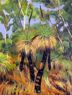 Grass trees Paddies Flat
