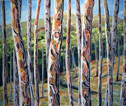 Paper-barks-(series)