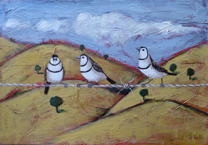Double Barred Finches
