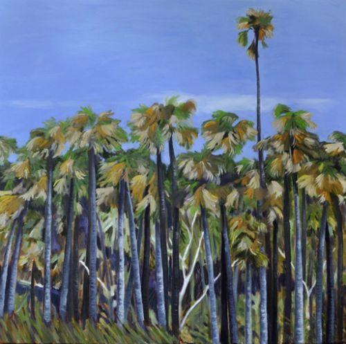Angourie Palms