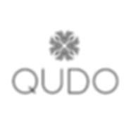 logo_qudo.png
