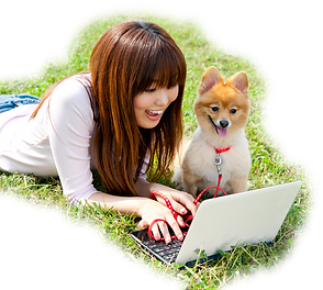 Shibu Inu QR tag with Woman on Laptop in