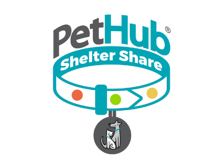 What Is Shelter Share?