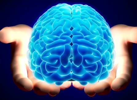 【無料であげる】最新認知症予防・改善マニュアルVer 2.0