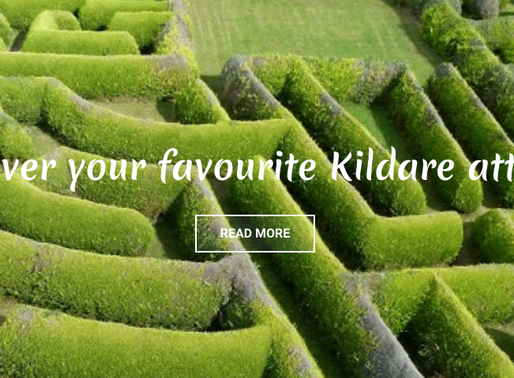 Be a 'Tourist in Your Own County' and Enjoy the Great Outdoors in Kildare