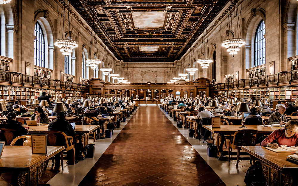 People working, reading, and studying in a historical library.