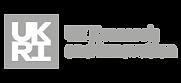 Logo_UKRaI-01-01-01.png