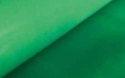 Colour Fiberglass Mesh - Green