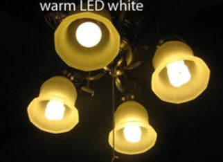 Warm LED Light