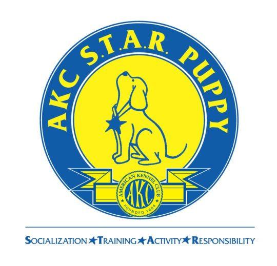 AKC S.T.A.R. Puppy Training