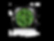 lynx visionz logo DONE(1).png