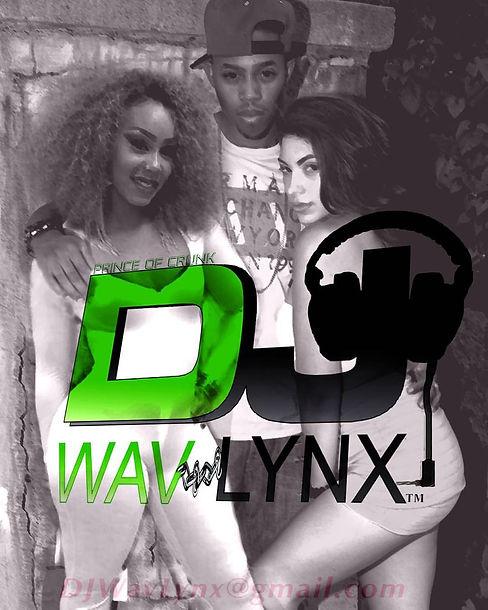 wav lynx poster .jpg