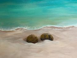 Coconuts in Private Beach mural