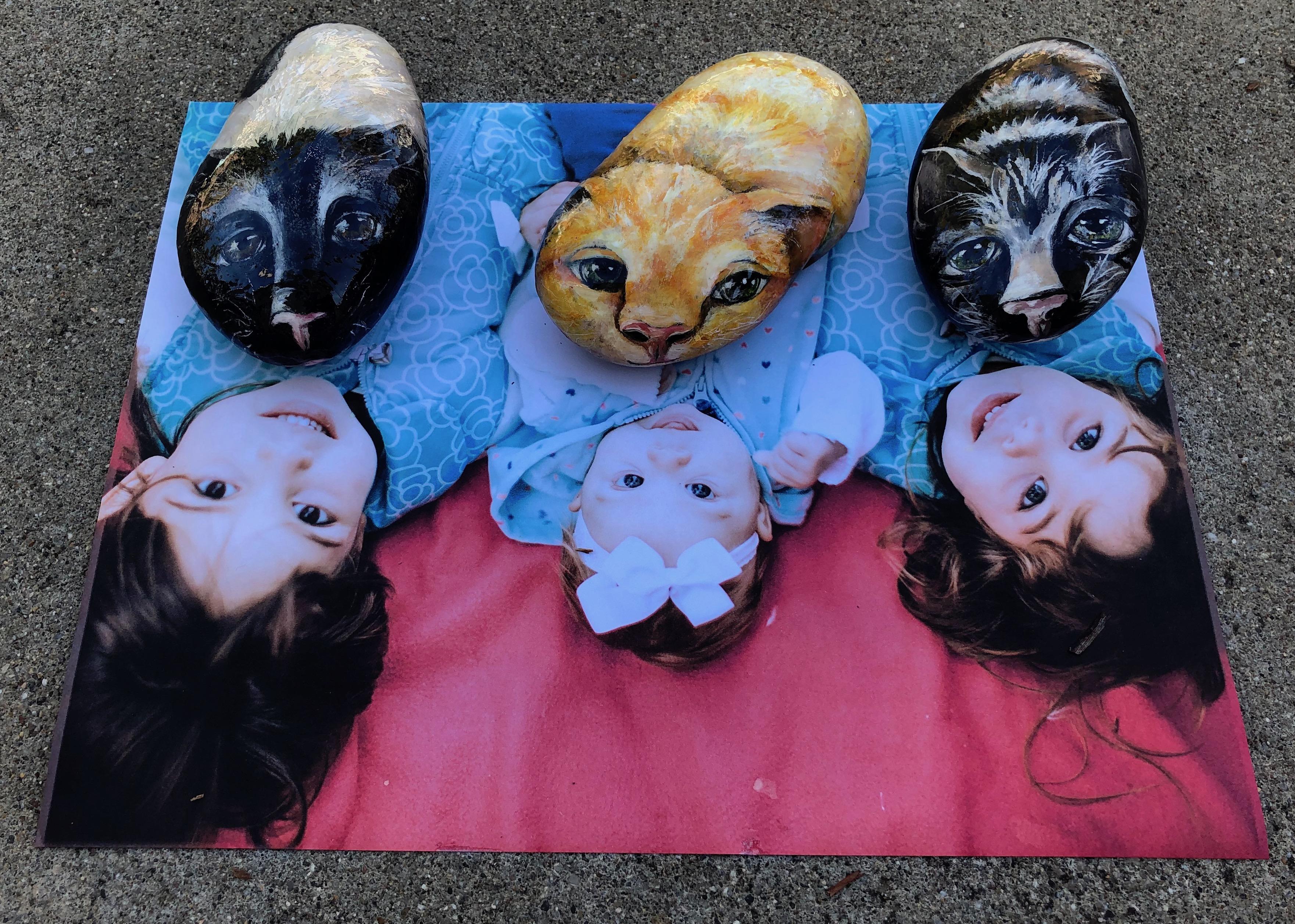 Lupita, Ophelia and Zelia Kitties