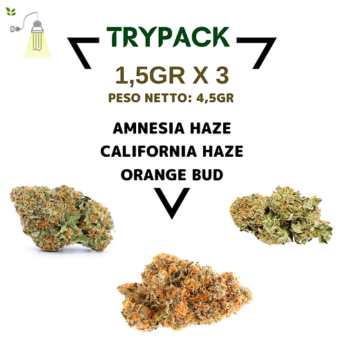 TRYpack Indoor 1°
