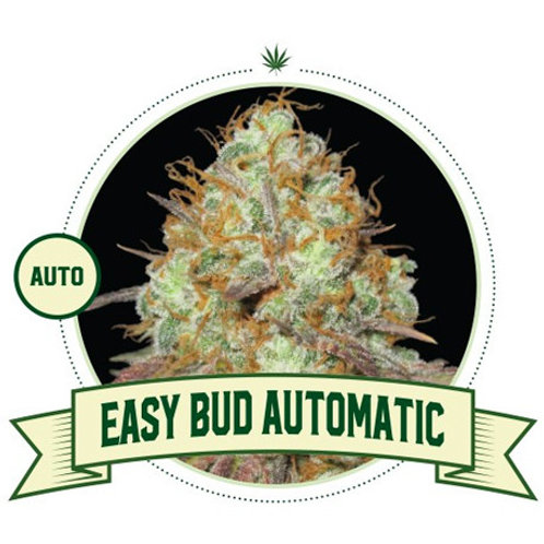 Easy Bud Automatic