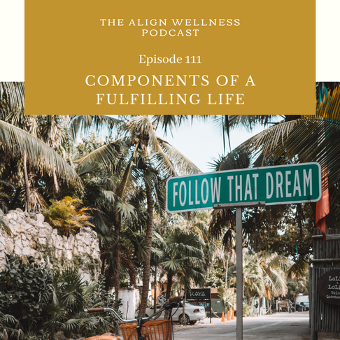 AWP 111 - Components of a Fulfilling Life