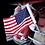 Thumbnail: LED Lighted Flag Pole with American Flag