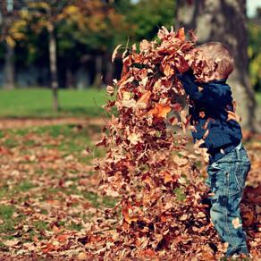 Fall Fun in the Time of COVID