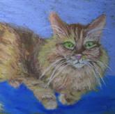 'My Cat 2'