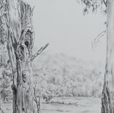 'Basin View'
