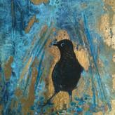 'Bower Bird'