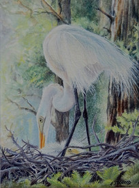Commended Miniature 'Egrets Early Evening'