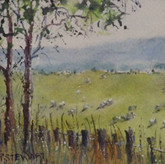 'Sheep in the Meadow'