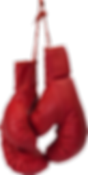 boxing_gloves_PNG10465.png