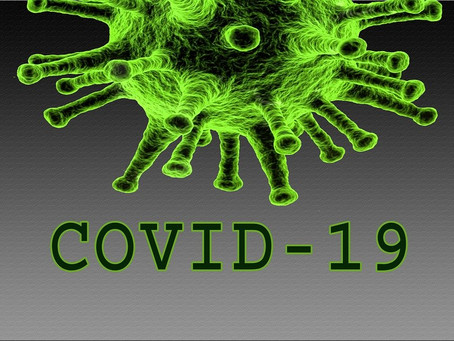 What Past Outbreaks Tell Us about the Novel Coronavirus