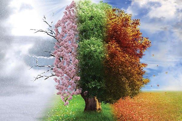 Four Seasons, Kansas Birthday Rockhill Real Estate Group