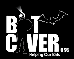 BatCaver.png