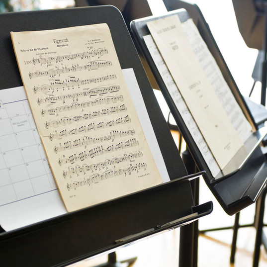 Music Stands  We carry foldable student music stands and adjustable ones.